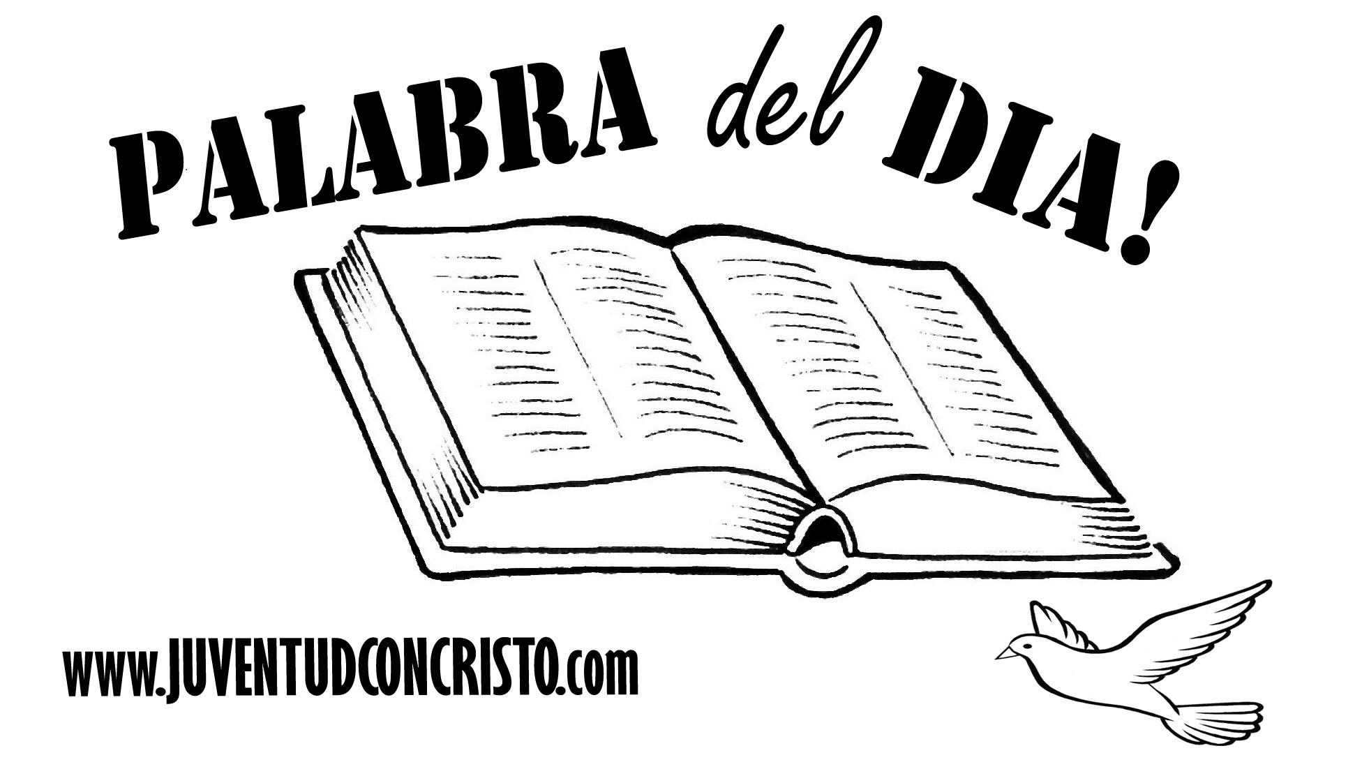 Biblia abierta para colorear  Imagui